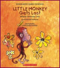 Little Monkey gets lost