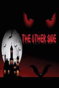 The Other Side by Faraaz Kazi and Vivek Banerjee